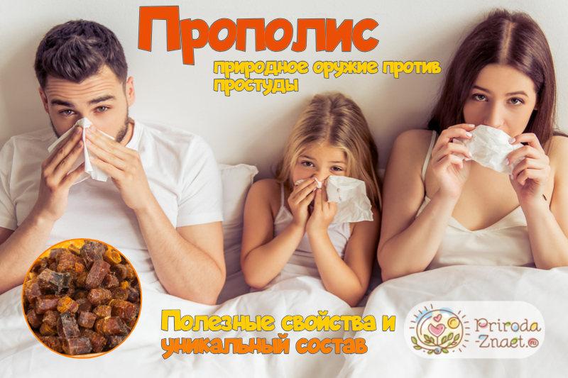 Применение прополиса от вирусов— противовирусные свойства продукта