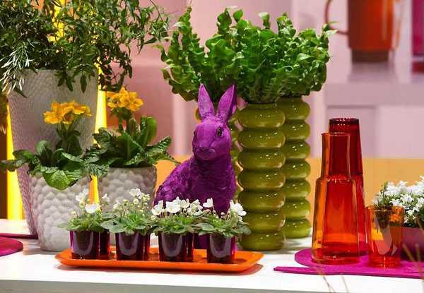 § 30. защита комнатных растений от болезней и вредителей