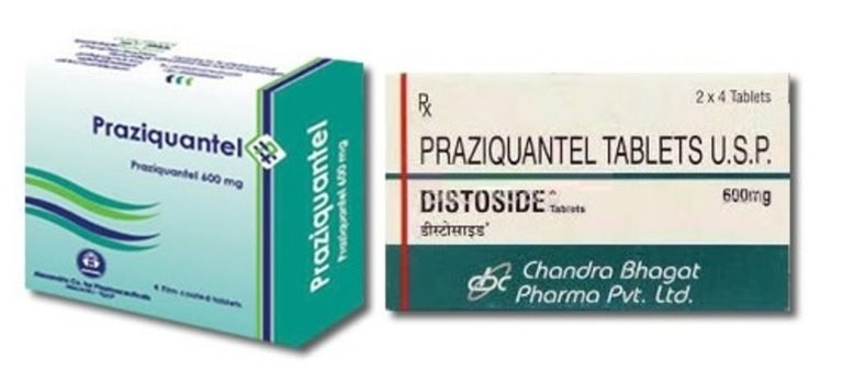 Празиквантел: состав, показания, дозировка, побочные эффекты