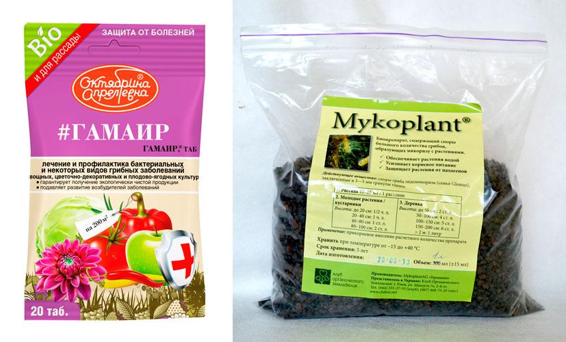 «фитолавин» – надежный антибиотик для садовых и огородных культур