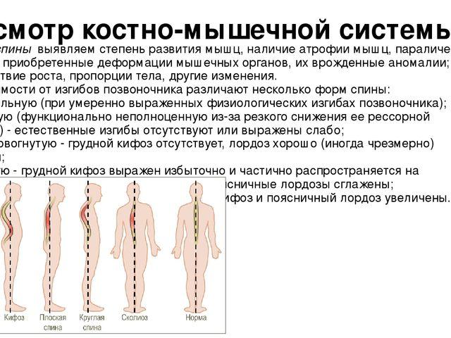 Пальпация — большая медицинская энциклопедия
