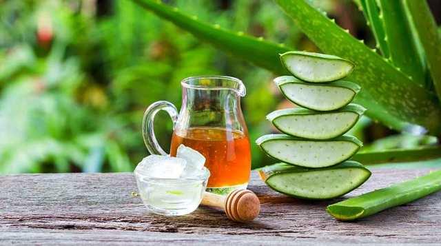 Рецепты домашней медицины от кашля из меда, алоэ и других ингредиентов