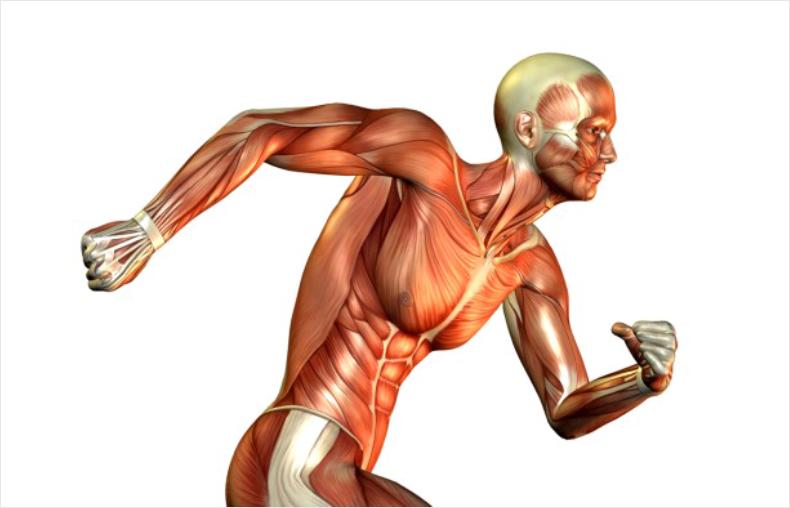 Лечение спазма мышц челюсти