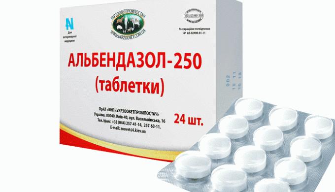 Альбендазол 400 — эффективное средство для лечения глистов
