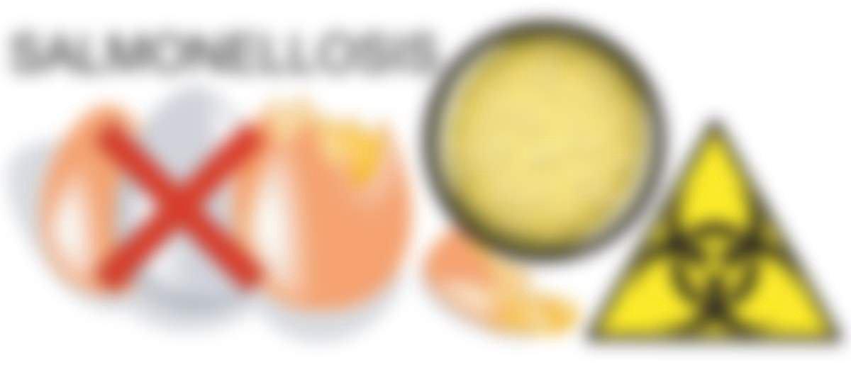 Сальмонеллез: симптомы у взрослых, лечение, профилактика