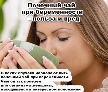 Почечный чай: ортосифон тычиночный. инструкция, отзывы, состав
