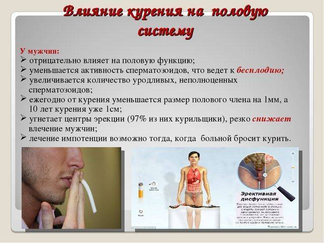 Влияние курения на развитие бронхитов