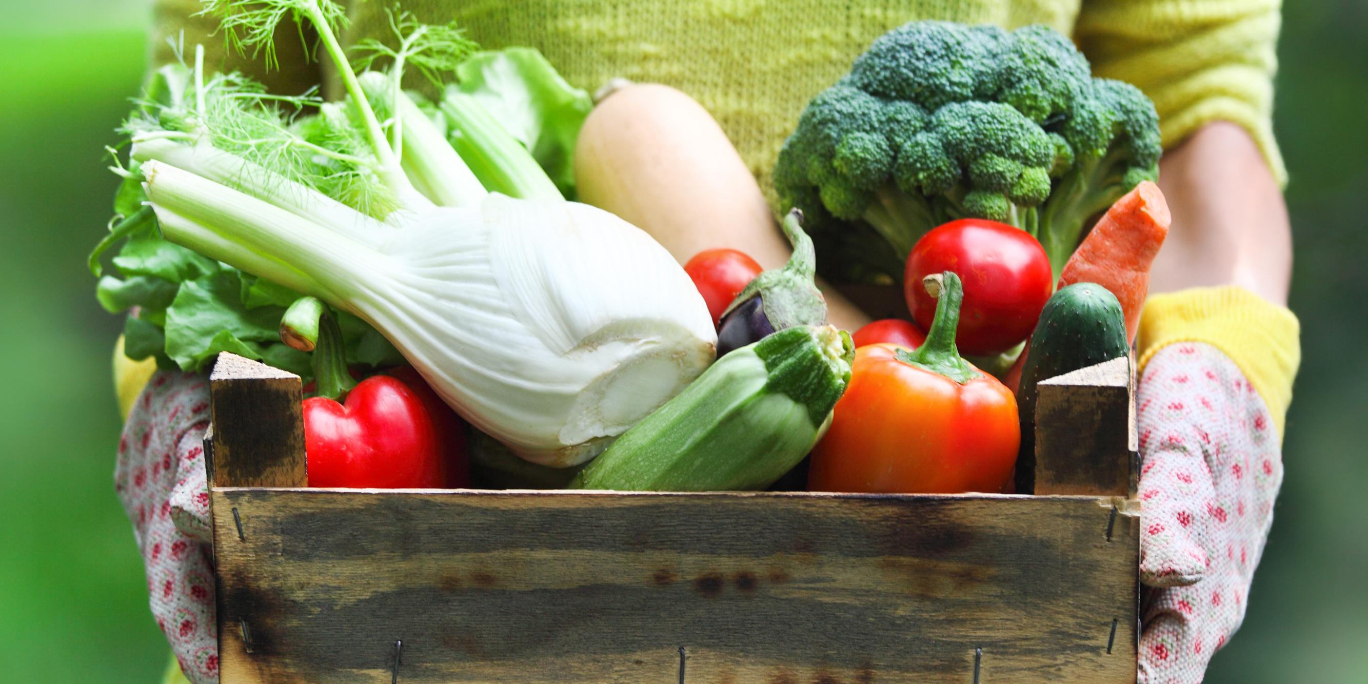 Календарь питания по дням для мирян на великий пост 2020