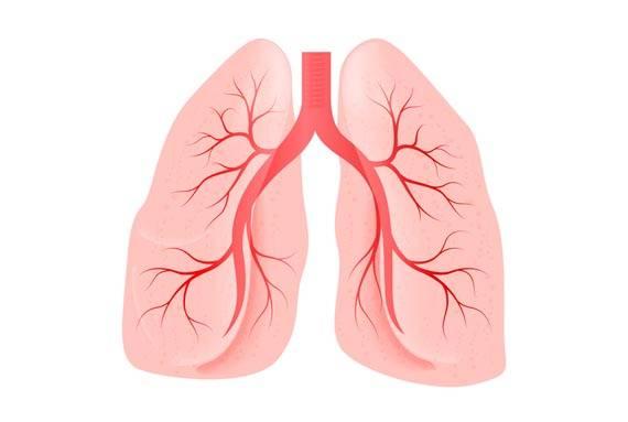 Причины возникновения пневмонии и способы ее профилактики