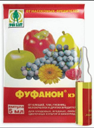 Фуфанон-нова: подробное описание средства защиты растений от вредителей
