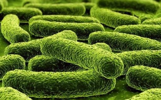 Как лечить туберкулез легких в домашних условиях по-старинке