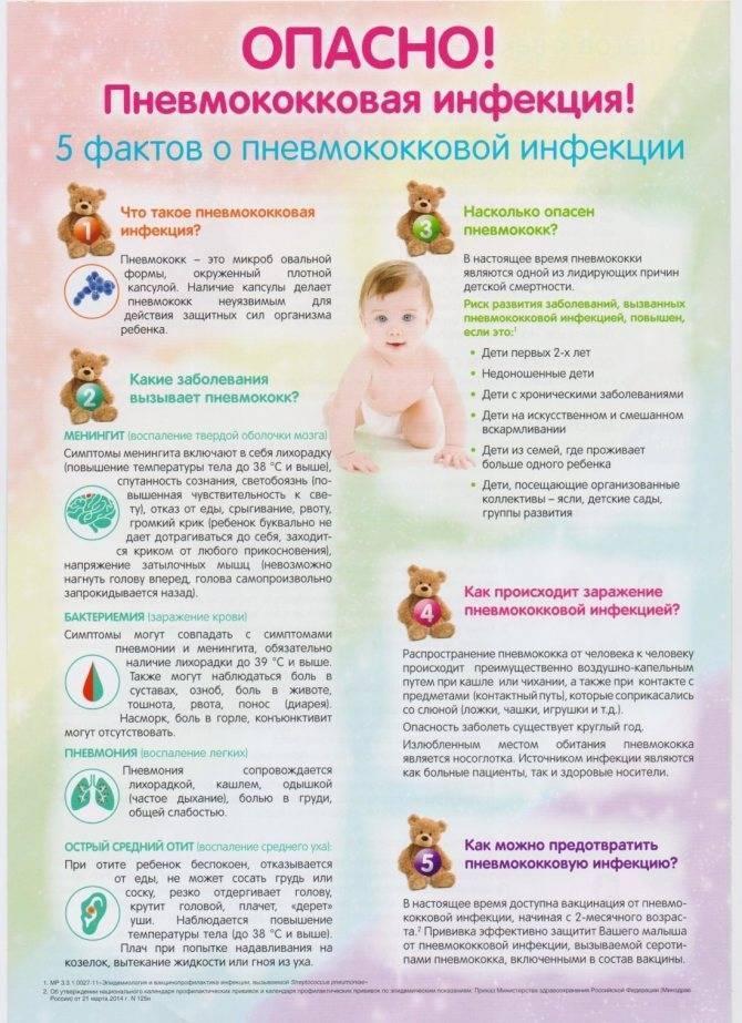Температура при пневмонии: причины, виды, как долго держится