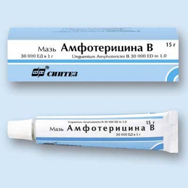Что представляет грибковая пневмония