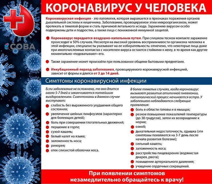 Что такое коронавирус и как им не заболеть