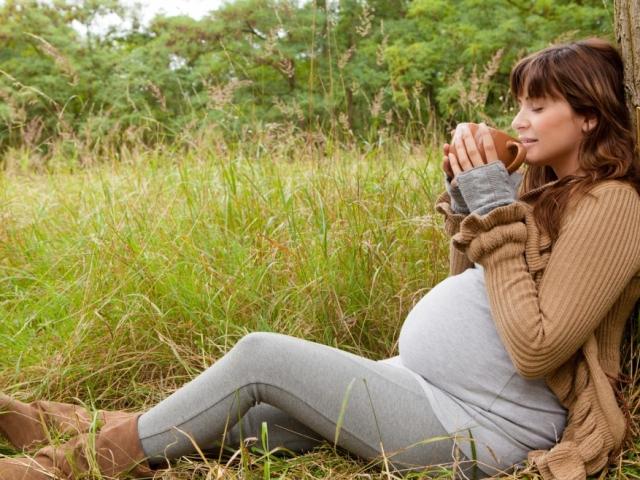 Лекарственные травы: какие нельзя пить при беременности?