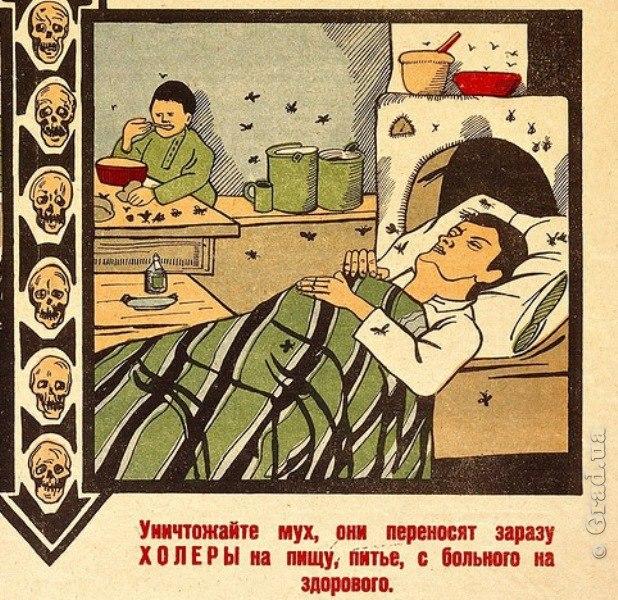 Холера – симптомы, лечение, профилактика, причины, диагностика