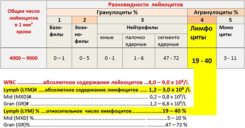 Лимфоцитоз