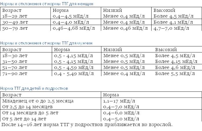 Тиреоидные гормоны: что это такое, функции