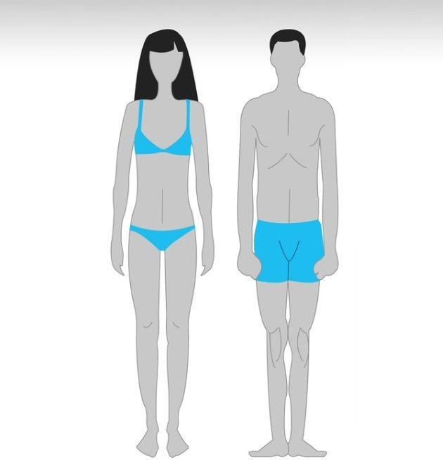 Как качаться эктоморфу? тренировки и питание для набора мышечной массы