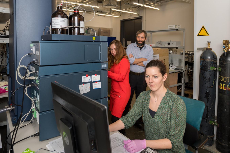 Растения в офисе - влияние растений на эффективность работы сотрудников