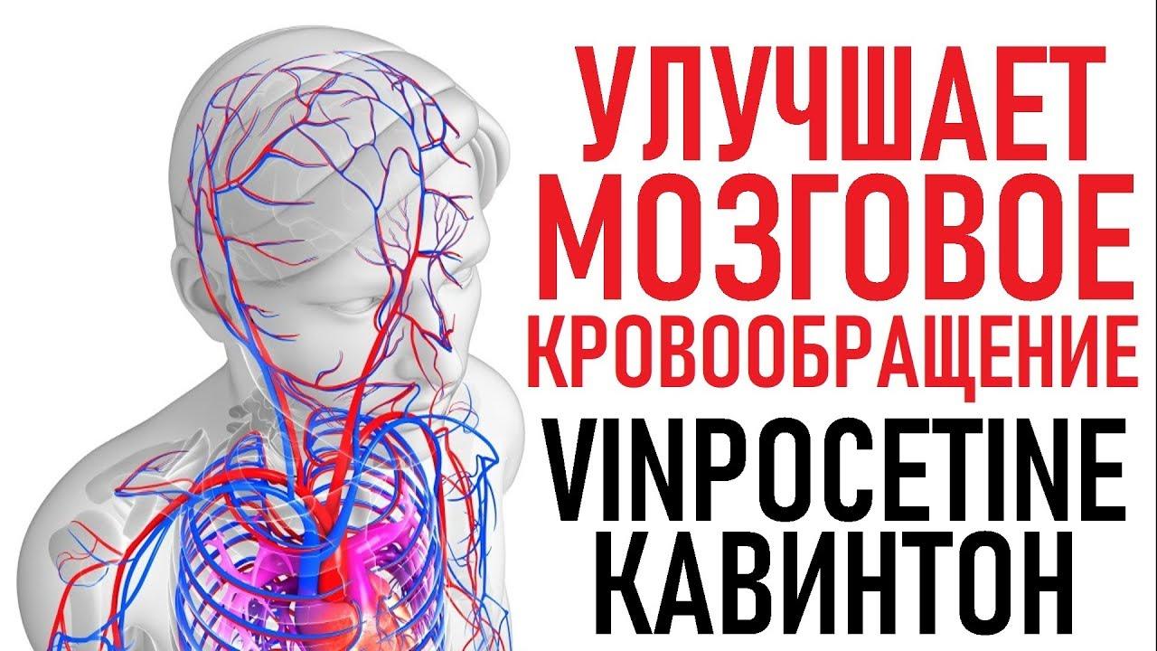 Винпоцетин: инструкция по применению, цена, отзывы, аналоги препарата