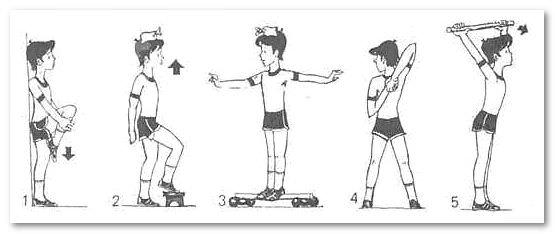 Как гимнастикой и упражнениями можно исправить сутулость у взрослого
