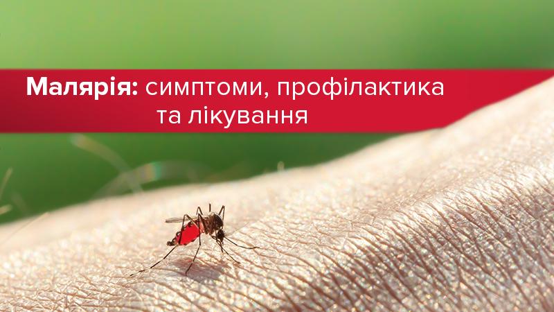 Слово малярия - что такое малярия? - значения слова, примеры употребления