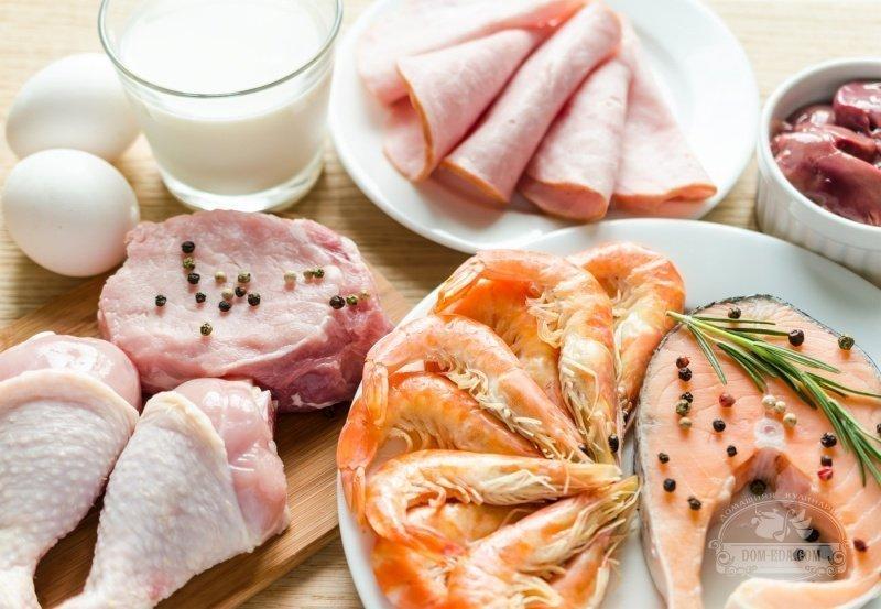 Плюсы и минусы высокобелковой диеты