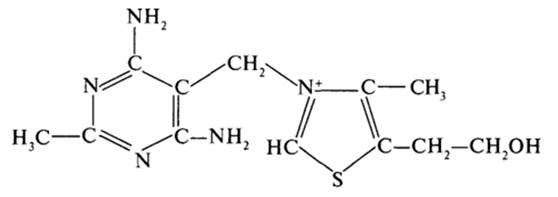 Инструкция по применению витамина b1 (тиамина)