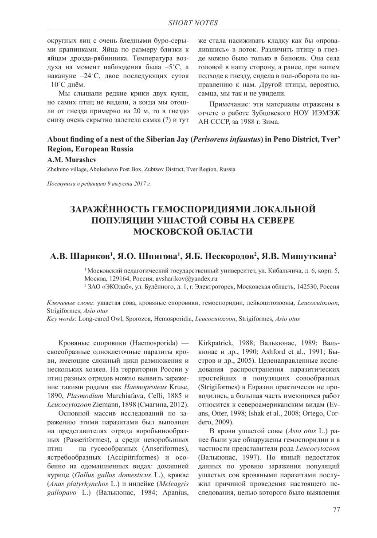 Споровики апикомплексы грегарины