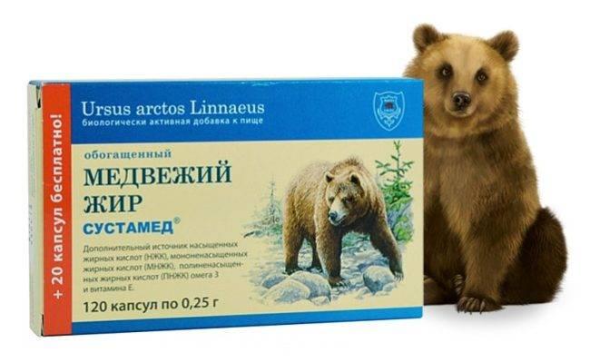 Как правильно принимать медвежий жир для лечения кашля?