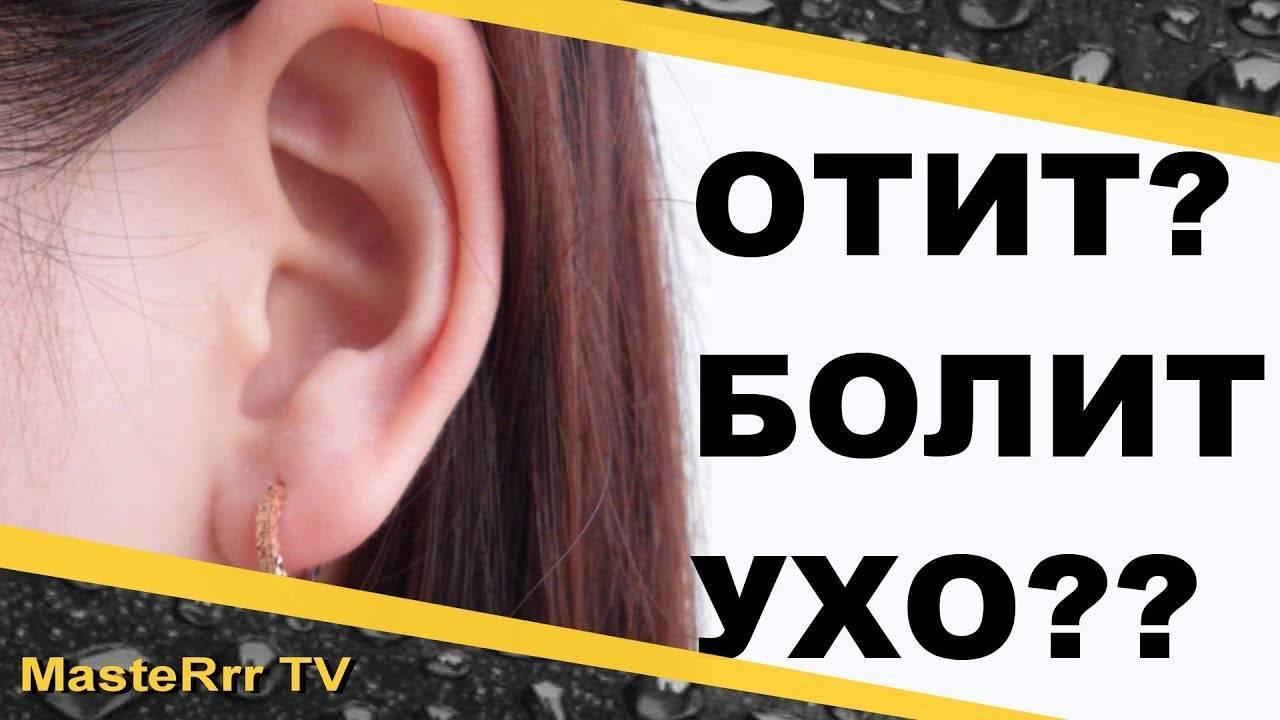 Лечение отита народными средствами – 7 проверенных рецептов - народная медицина | природушка.ру