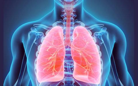 Признаки пневмонии у взрослого с температурой – симптомы воспаления легких