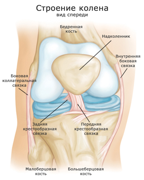 Надрыв связок коленного сустава – лечение, сроки реабилитации