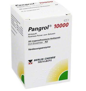 Пангрол 10000: инструкция по применению и для чего он нужен, цена, отзывы, аналоги