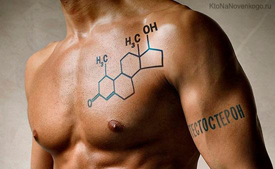 Как воздействует и на что влияет тестостерон у мужчины?