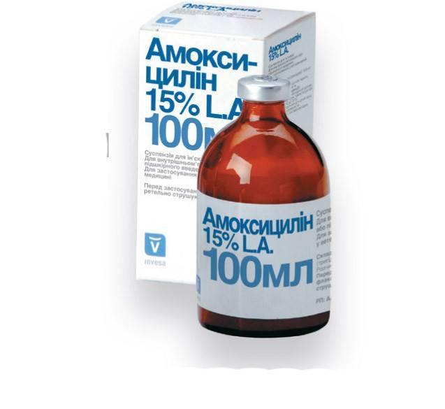 Амоксициллин при простуде и гриппе как принимать