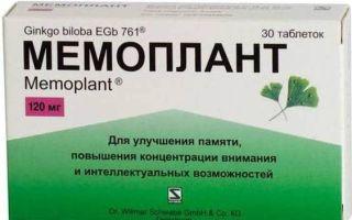 Гинкго билоба – лекарственное растение