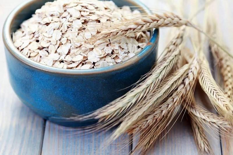Использование овса при лечении бронхита: рекомендации по применению и рецепты