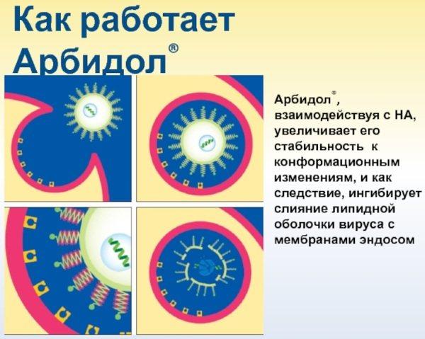 Умифеновир: состав, инструкция по применению, дозировка и аналоги