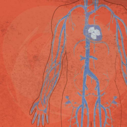 Симптомы и лечение истощения нервной системы