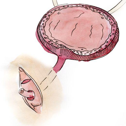 Эффективные таблетки и капли для выведения камней из почек