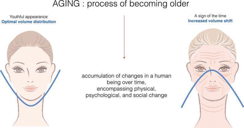 Худеет лицо с возрастом. процессы старости, отражающиеся на внешности человека
