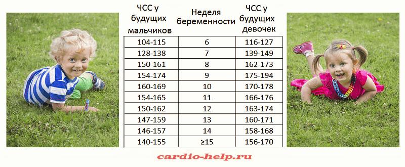 Сердцебиение плода при беременности: таблица нормы по неделям