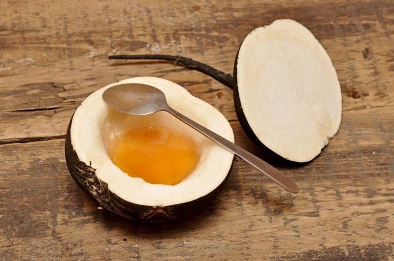 Топ-5 лучших рецептов с алоэ и медом от кашля