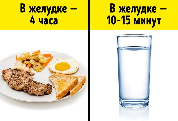Можно ли пить воду во время еды: вредно или нет