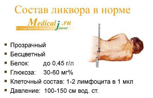Спинномозговая и черепно-мозговая жидкость (ликвор), ее функции. циркуляция ликвора