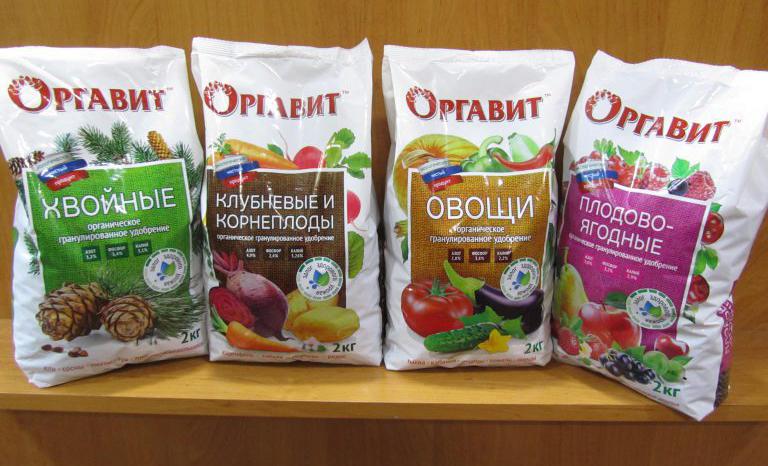 Применение экстракта конского навоза: как приготовить рабочий раствор и провести подкормку растений