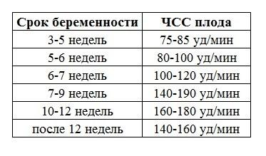 Чсс плода по неделям – таблица, норма чсс у плода по неделям беременности, пол ребенка