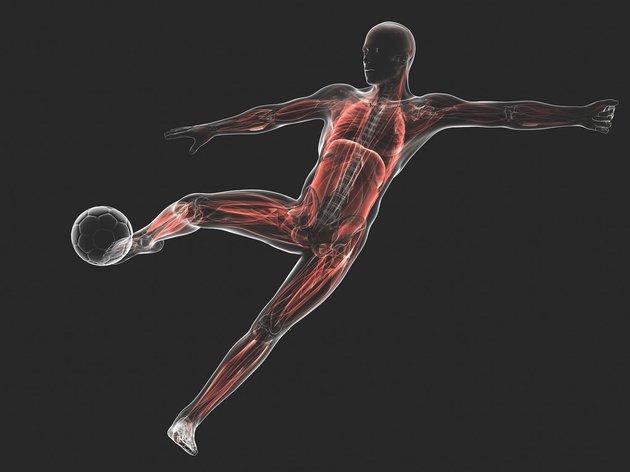 Правильное и сбалансированное питание для спортсменов